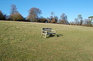Hambledon 6.jpg