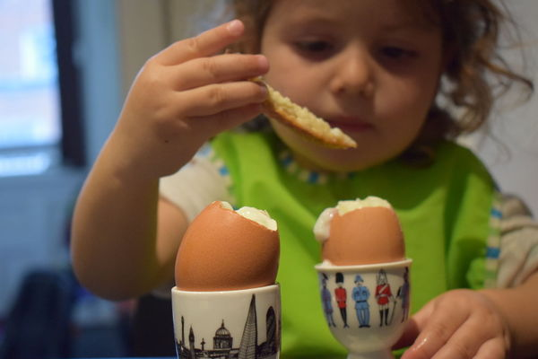 Julia-with-eggs-Aug17.jpg