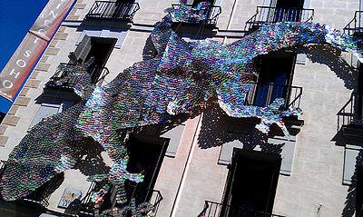 Light-lizard-Madrid-7Aug14.jpg