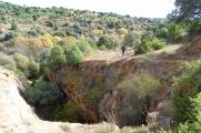 Manzanares-1Nov2013-18.jpg