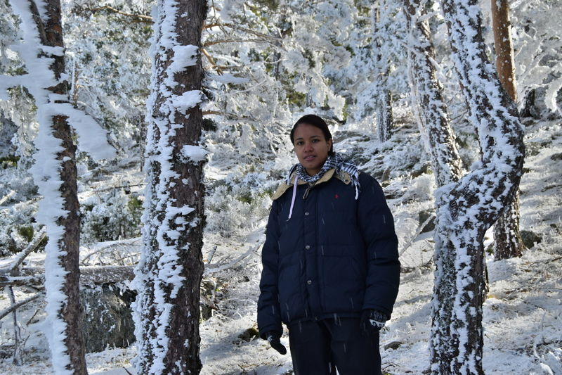 File:SnowNavafria-17Jan16-9.jpg