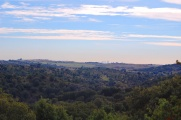 Manzanares-1Nov2013-14.jpg