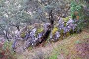 Manzanares-1Nov2013-13.jpg